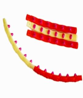Обруч пластиковый разборный SUPER SLIM - 96 см. O-H10 2099